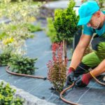 What should you look out for when choosing an irrigation installer?